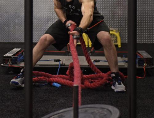 Fyzická příprava pro MMA